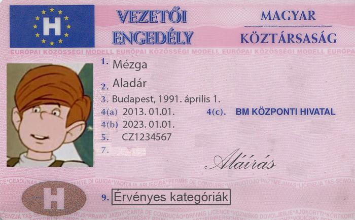 látás és vezetői engedély)